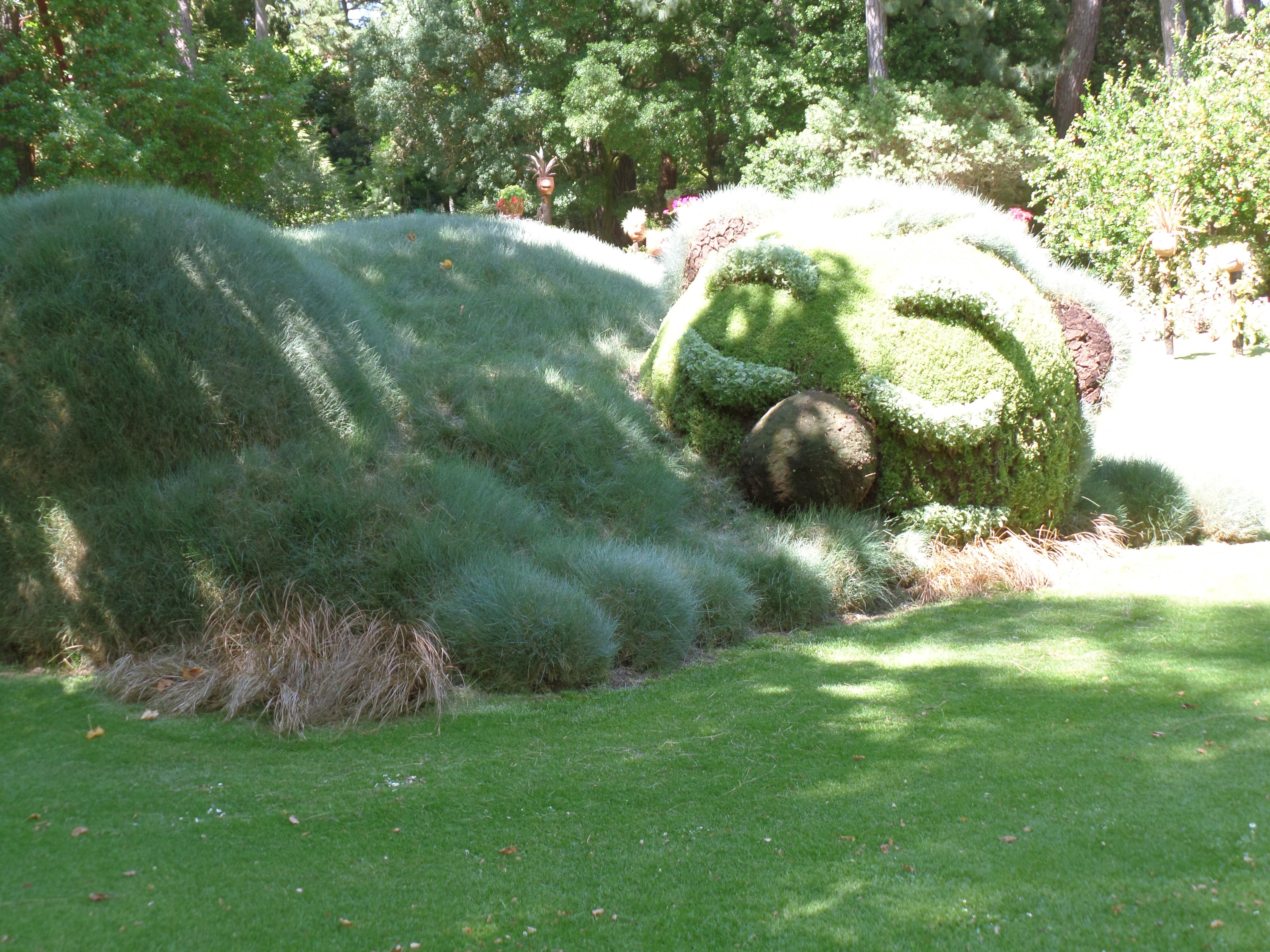 Le jardin des plantes ı Voyage à Nantes #2 - Aurora Borealis